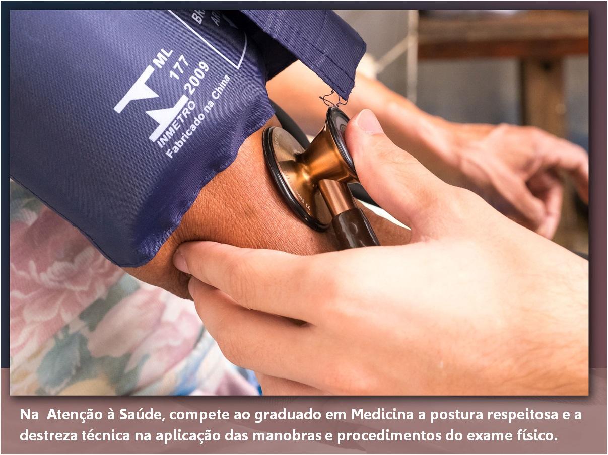 Disciplinas Inscritas Pad 1º Semestre 2020 Faculdade De
